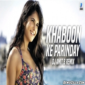 Khaabon Ke Parinday New Remix DJ Amit B
