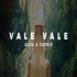 Vale Vale Ho Free Fire Dj Remix Song